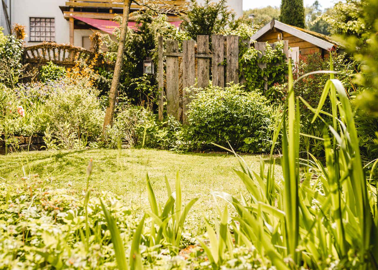 Garten, garden, tuin